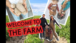 Welcome to the Farm!