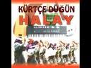 Kürtçe Hareketli Düğün Müzikleri Govend Delilo Halay Yeni! 2019