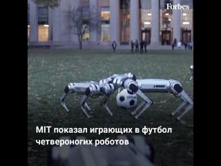 MIT показал играющих в футбол четвероногих роботов