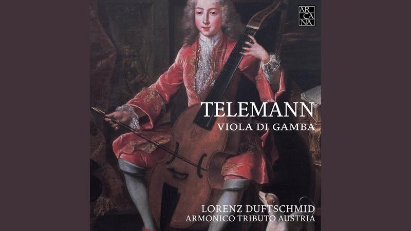 Concerto for Recorder, Viola da Gamba, Strings and Continuo in A Minor, TWV52a1 I. Grave