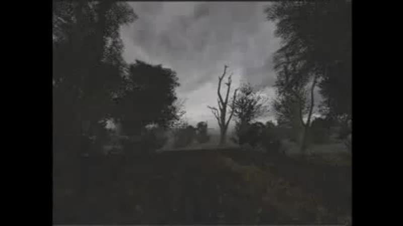 S T A L K E R Darkscape