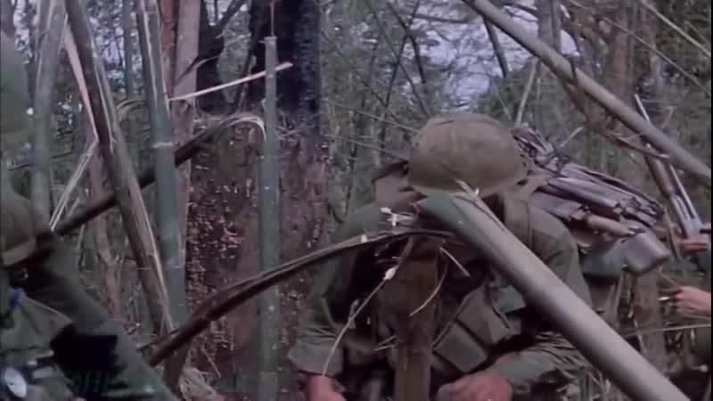 Затерянные хроники вьетнамской войны 2 Поиск и уничтожение 1966 1967 Док