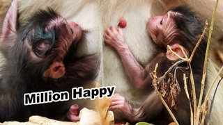 Million Happy Newborn Baby When See Gorgeous Mother Trying To Breastfeed - Adorable Wildlife 2020