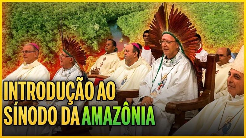 Introdução ao Sínodo da Amazônia veja até o final