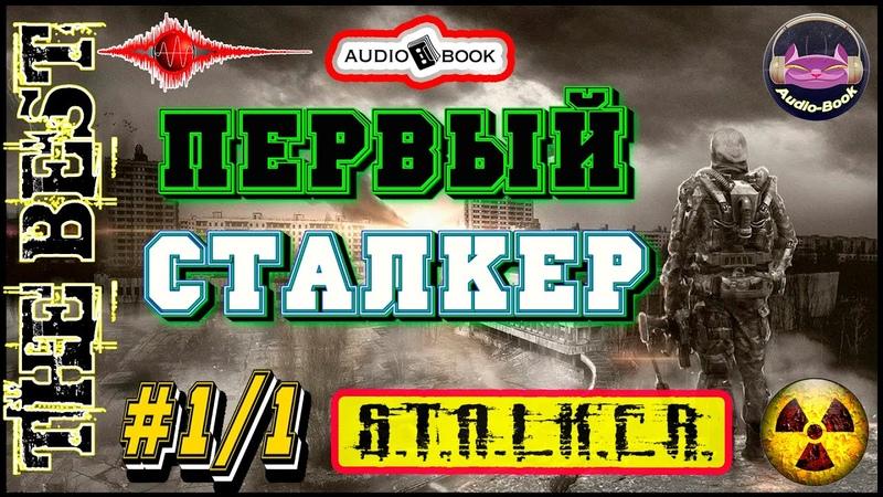 🎧📖🎤«Первый сталкер» 1/1 🎼[S.T.A.L.K.E.R.] 👌🏆👍Аудио_книги