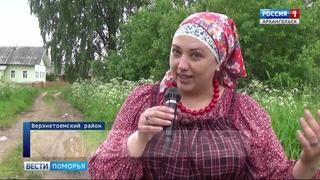 Более полутора сотен гостей собрал в деревне Артемьевской традиционный фокинский фестиваль