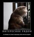 Личный фотоальбом Антона Зыборева