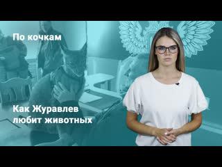 «По кочкам» с Надеждой Писец. Как Журавлев любит животных. ФАН-ТВ