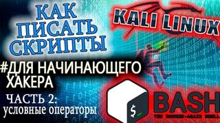 Основы написания сценариев для начинающего хакера. Kali Linux. Часть 2