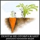 Фотоальбом Людмилы-Милы Гулария