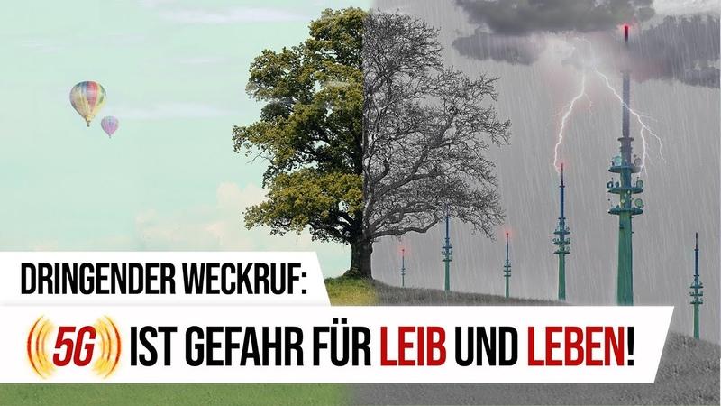 Dringender Weckruf: 5G ist Gefahr für Leib und Leben! | 28.01.2019 | www.kla.tv/13770