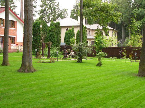 Как правильно стричь газон, изображение №5