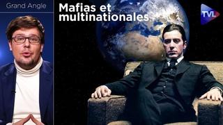 Mafias et multinationales : vers une planète bananière ? - Grand Angle (Pierre-Yves Rougeyron) - TVL