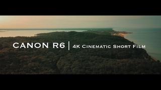 Snapshot of Nature   Canon R6   4K Cinematic Short Film   Clog3 Cinema Gamut   Firmware Update 1.4  