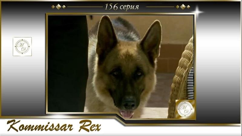 Komissar Rex 14x08 Комиссар Рекс 156 серия