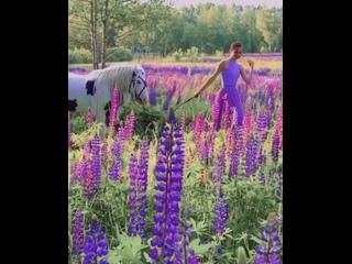 Прогуливаясь по летнему саду, вдыхая сладкий аромат цветов .... понимаешь все больше природу своего внутреннего состояния....⠀💚