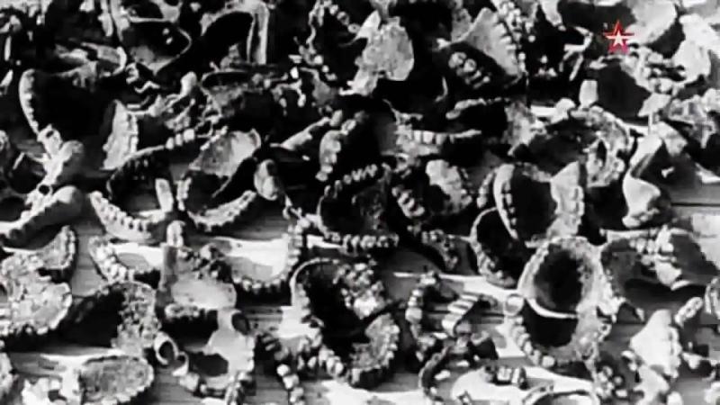 Без срока давности Травники школа палачей 2015 год документальный качество Full