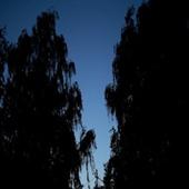 Footage Full HD (футаж) - Dark
