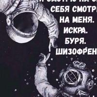 Фотография Алексея Шалаева