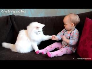 Малыши и Котэ