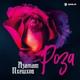 Азамат Пхешхов - Роза
