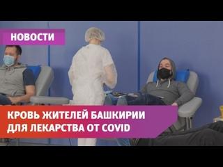 Кровь жителей Башкирии помогла в создании первого в мире препарата, содержащего антитела
