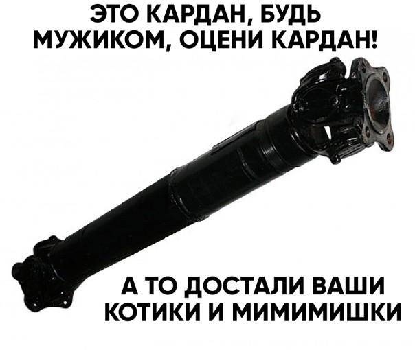 Будь МУЖИКОМ, оцени!)