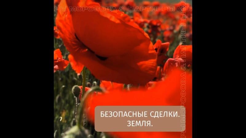 Видео от МОРОЗОВА И ПАРТНЕРЫ Cевастополь Крым Москва