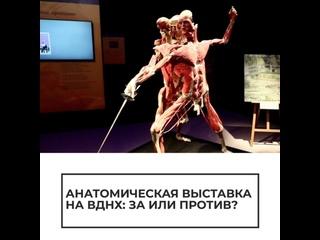 Анатомическая выставка на ВДНХ