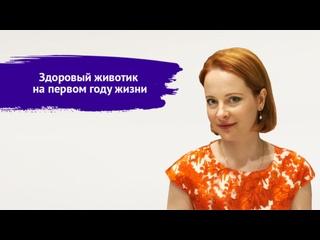 Здоровый животик на первом году жизни. Врач-гастроэнтеролог, консультант по ГВ - Попова Ирина.