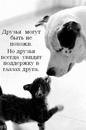 Фотоальбом Элины Оспанбаевой