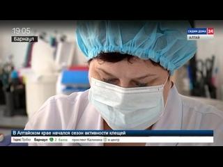 Некоторые жители Алтайского края уверены, что давно переболели коронавирусом