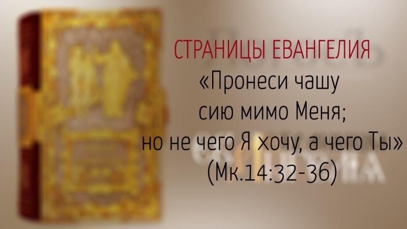Страницы Евангелия Пронеси чашу сию мимо Меня но не чего Я хочу, а чего Ты (Мк.1432-36)