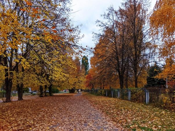 ???? Осень - пора листопада ????