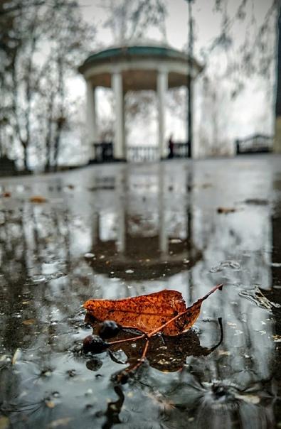 После дождичка | Фото: Татьяна Семёнова | #Киров...