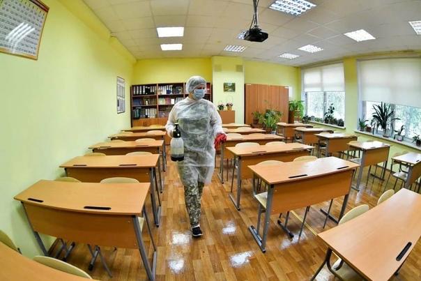 Число перешедших на «удаленку» классов в школах Пе...