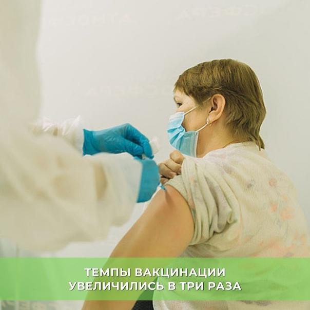 Темпы вакцинации увеличились в три раза Темпы вакц...