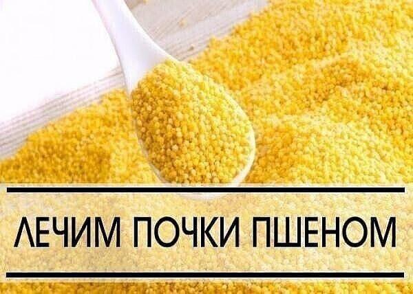Пять способов лечения болезней почек пшеном)))