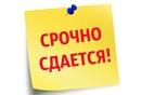 Объявление от Nadezhda - фото №1