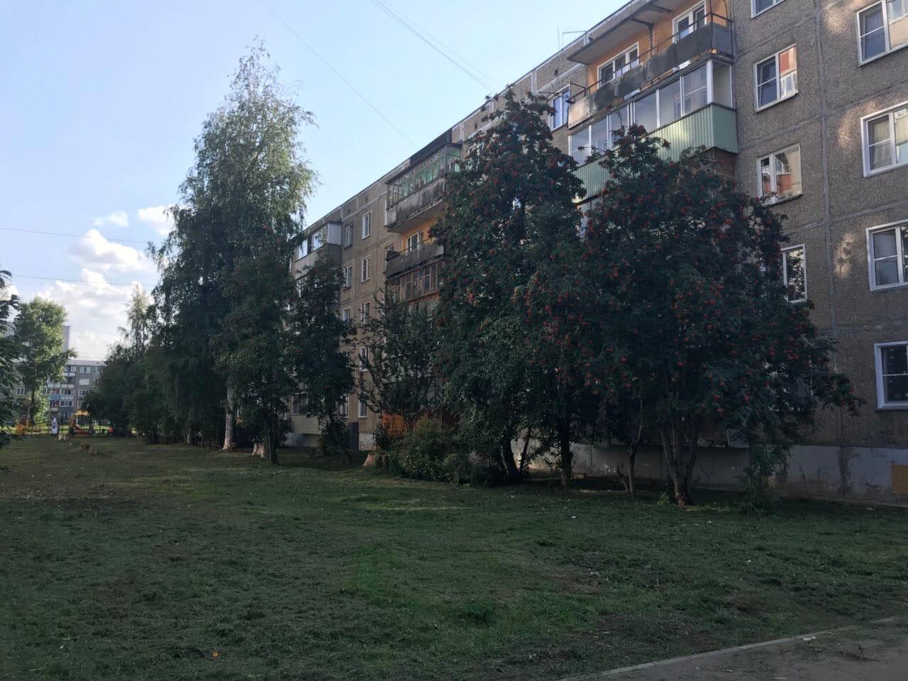Проспект Строителей дом 36 кошение травы