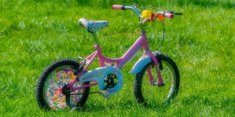 В Энгельсе вооруженный лопатой мужчина скрылся с детским велосипедом