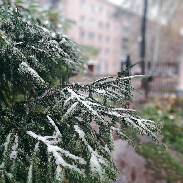 Гидрометцентр России прогнозирует на территории Но...