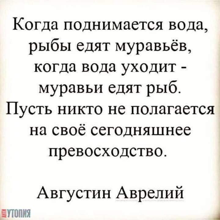 АНТИУТОПИЯ  УТОПИЯ 136005