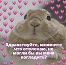 Любимова Виктория      42