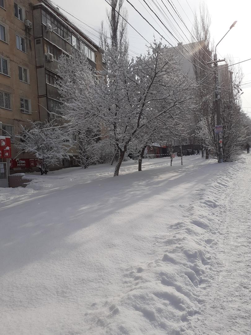 Александр Сидоров, Симферополь - фото №1