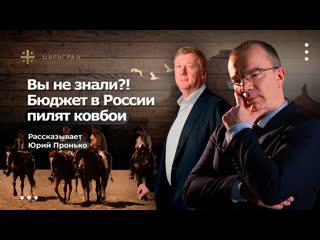 Вы не знали?! Бюджет в России пилят ковбои – рассказывает Юрий Пронько