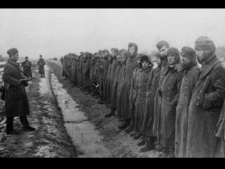 С. лазебная. «не жалели детей, избивали стариков». три истории из жизни «под немцами»