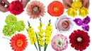 11 идей цветов для осенних букетов из конфет. Цветы из гофрированной бумаги. Подарки и поделки.