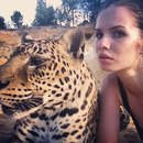 Личный фотоальбом Alena Romanova