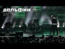 Дельфин Dolphin - Дверь Акустика live